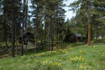Luxury Cabin Guesthouse - Hamilton - Cabin