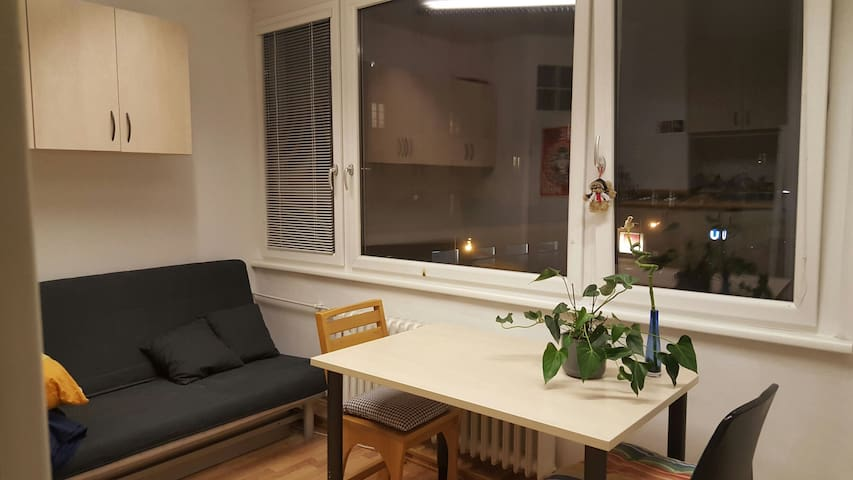 Sunny flat, across st from subway! - Vienne