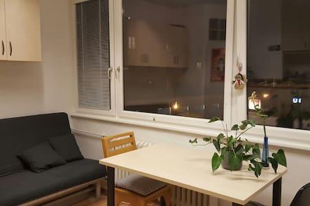Sunny flat, across st from subway! - Vienna - Apartemen