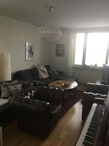 Cozy apartment located 15 minutes from city