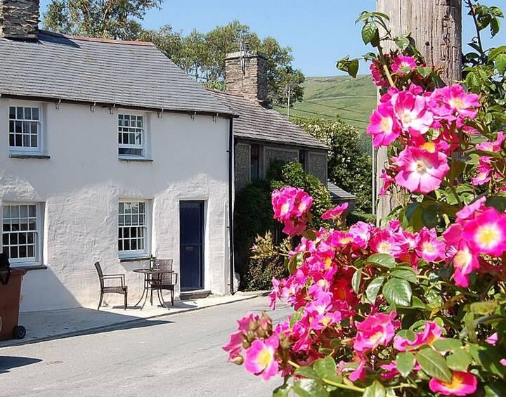 Rhine Cottage Cosy Cottage in Welsh Village