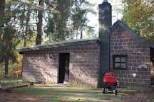 Naturpur  - Haus in Wald