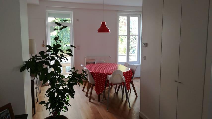 Belle maison familiale dans quartier calme - Nancy - Huis