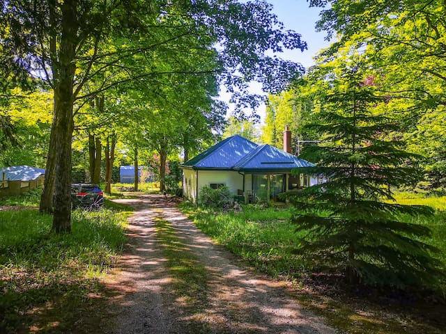 Relax & Unwind in the Picturesque Beaver Valley