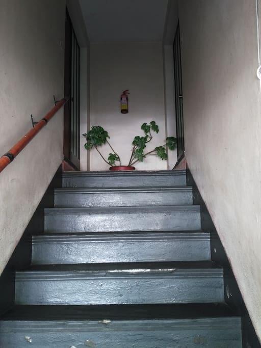 Escalera entrada calle