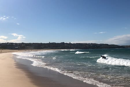 Absolute Beachfront, Sydney Holiday Escape
