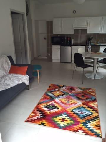 Joli appartement rénové - L'Albenc - Apartment