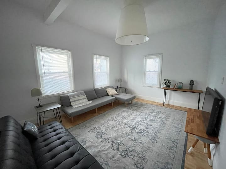 Spacious One-Bedroom close to Train and Downtown