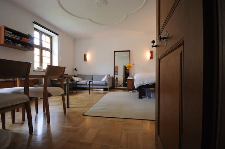 Gemütliche Altbauwohnung in der City - Bayreuth - Appartement
