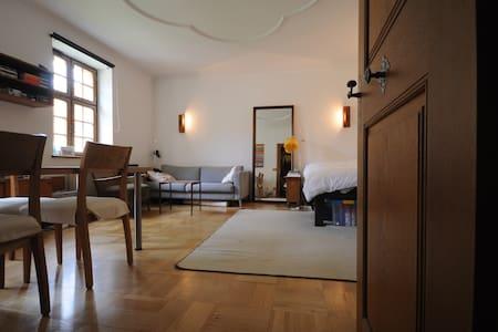 Gemütliche Altbauwohnung in der City - Bayreuth - Apartament