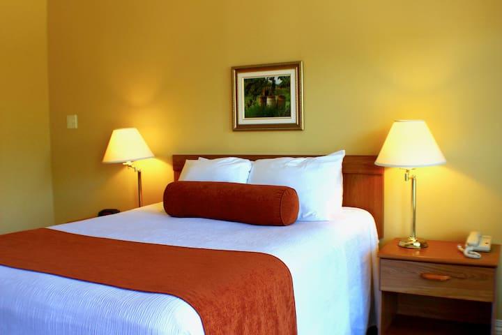 Evangeline Motel- Queen Room