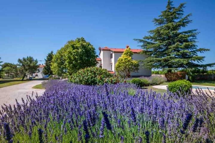 Villa Branko- the love of rural tourism