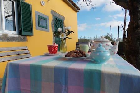 Casa Bouganvillea - Ginetes