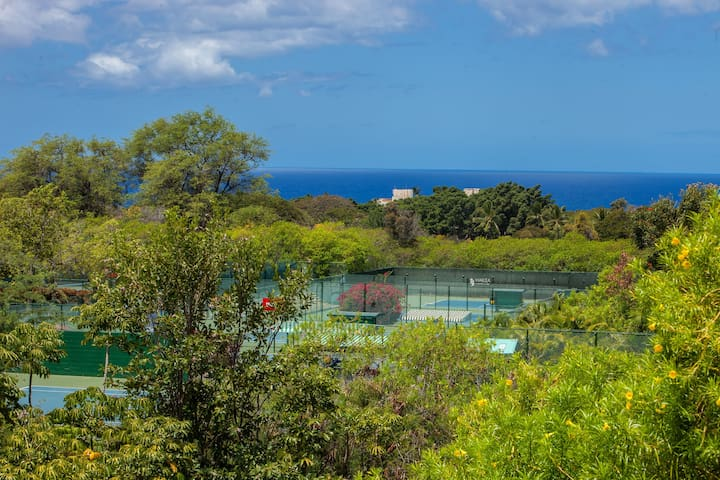 Newly Remodeled Ocean View Condo in Wailea!