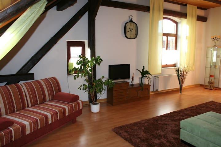 Gemütliche DG-Wohnung auf privatem Reiterhof - Algermissen - Condominium