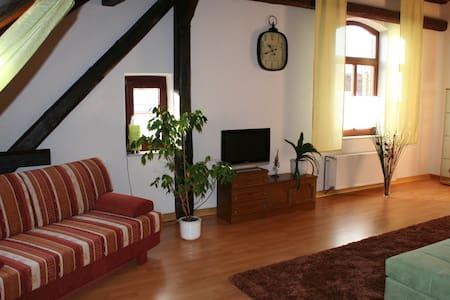 Gemütliche DG-Wohnung auf privatem Reiterhof - Algermissen