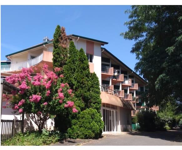 """Apt T2 """"Bien ici"""" cures & vacances-St Paul lès Dax"""