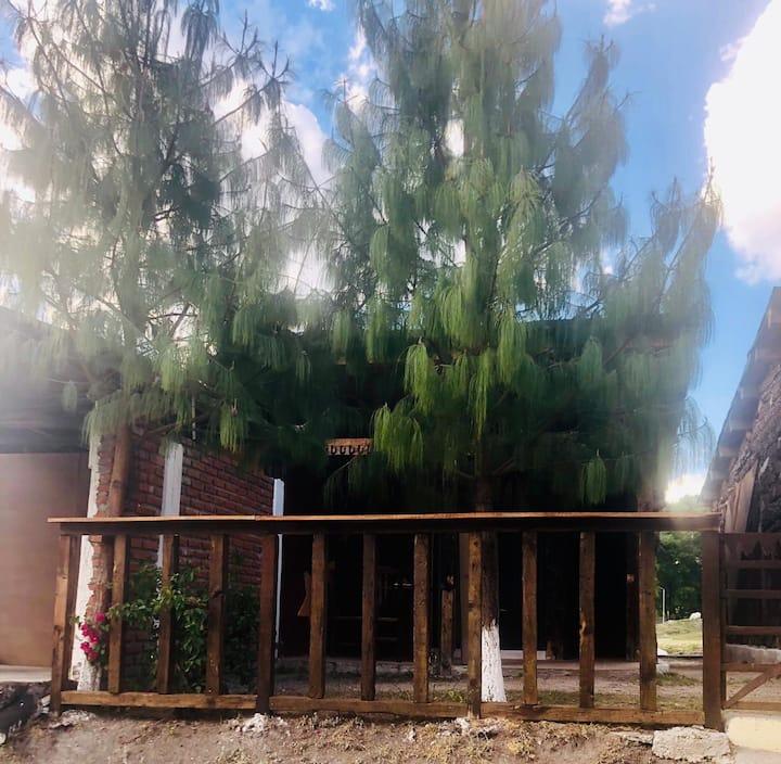 Cabañas en la Presa de Taxhimay  Ven a relajarte