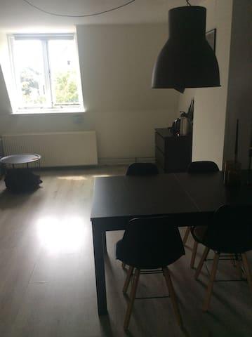 Ruime kamer in hartje Bottendaal, Nijmegen