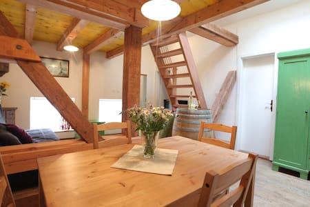 Apartment Soca Tolmin - Tolmin - 公寓