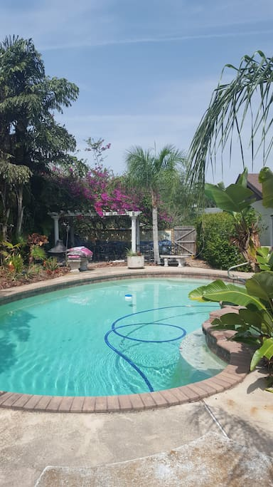 Pool with tropical surrounding and pergola.