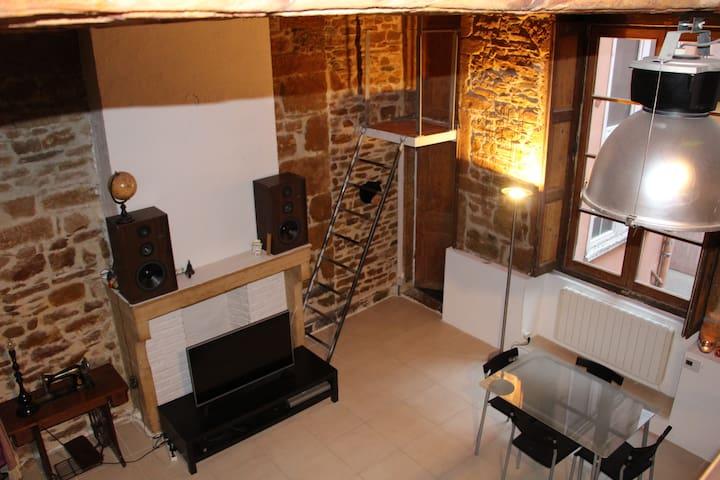 Nice spacious appartment, Lyon City Center - Lyon - Huoneisto