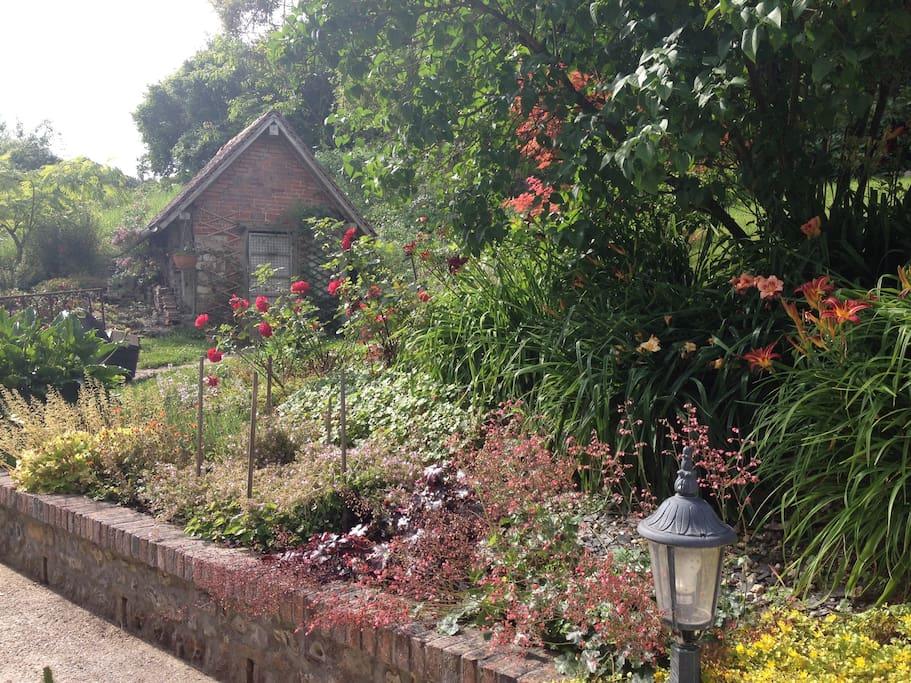 Jardin fleuri.