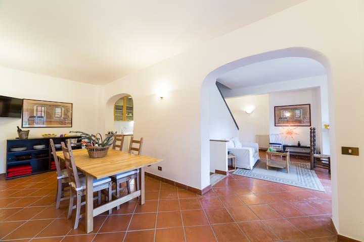 Country villa vineyard free wifi n3 - Grottaferrata - Villa