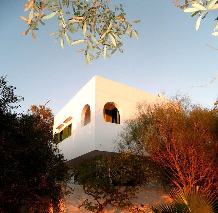 Small gorgeous villa in olivegarden