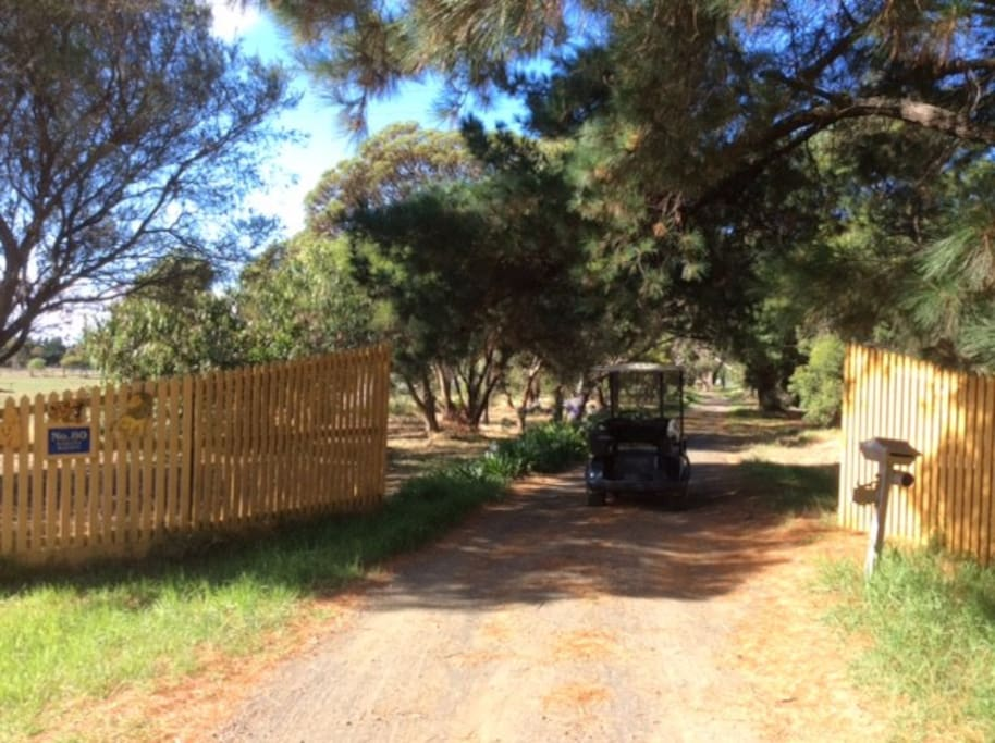 Driveway into property
