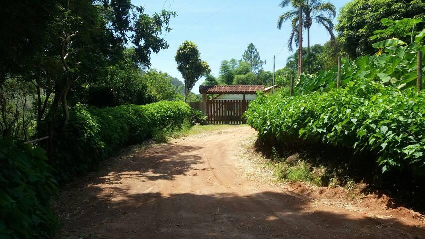 Nature, silence, rainforest refuge! - Lumiar - House