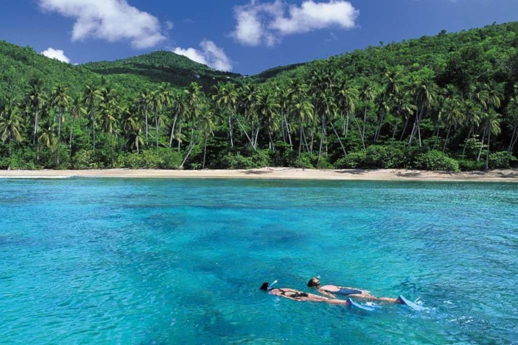 A world of snorkeling