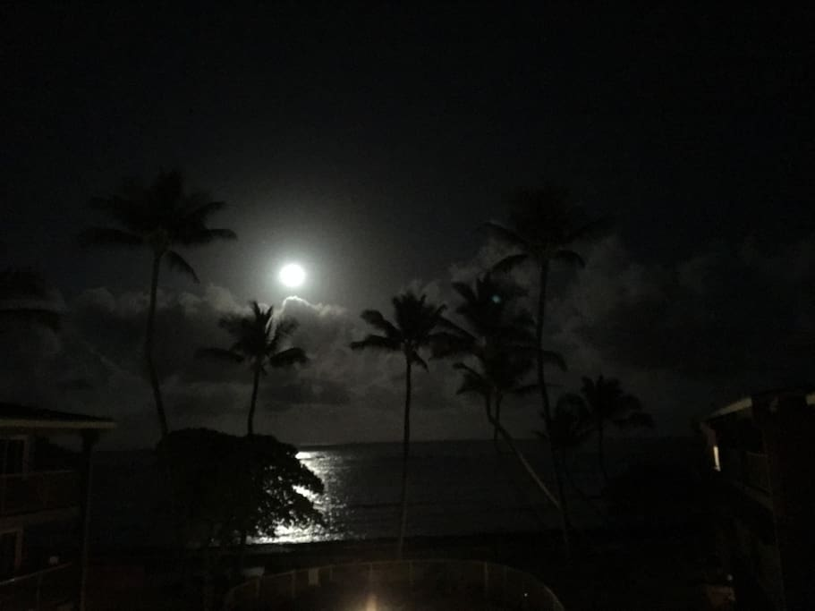 Moonlight by night from the lanai