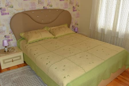 Gabala City Centre House