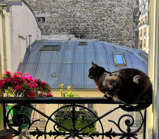 Room/appt. close to Eiffel Tower!