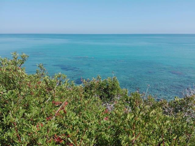 Villa Borgo degli ulivi: relax tra azzurro e verde