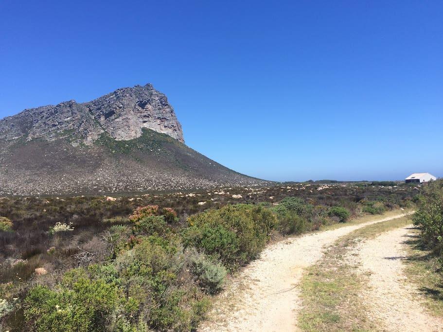 Driveway into the 60 acre private land along the coastline