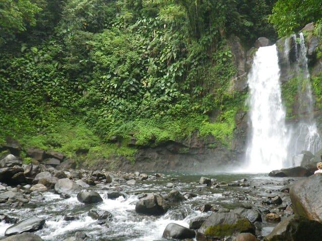 Les cascades les rivieres de la reserves nationale  à moins de 15mn