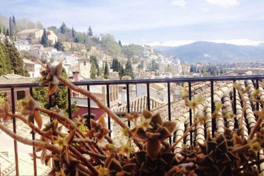 Vistas desde terraza privada