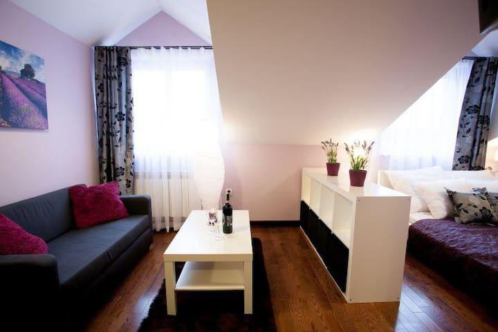 A cozy apartment in the city center (Studio)