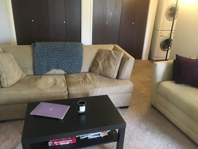 Great apartment in very nice neighborhood! - Meridian charter Township - Pis