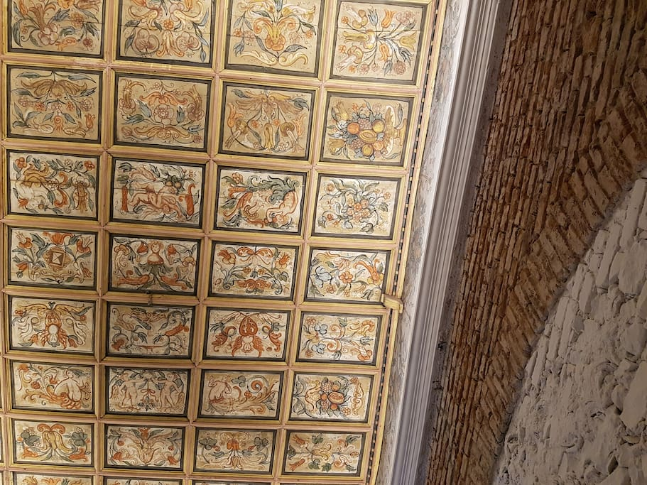 one of the historical ceilings view from your vertical position..