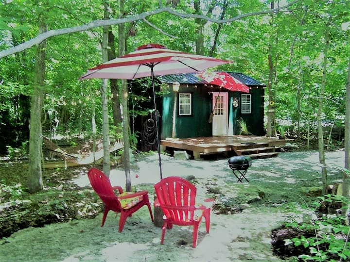Watertree Tiny House in the Woods!  Clean Air!