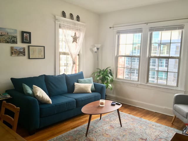 Sunny one-bedroom apartment in the heart of DC