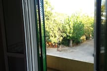 The view from the 3rd bedroom. It has a small balcony that is shared with the 1rst bedroom
