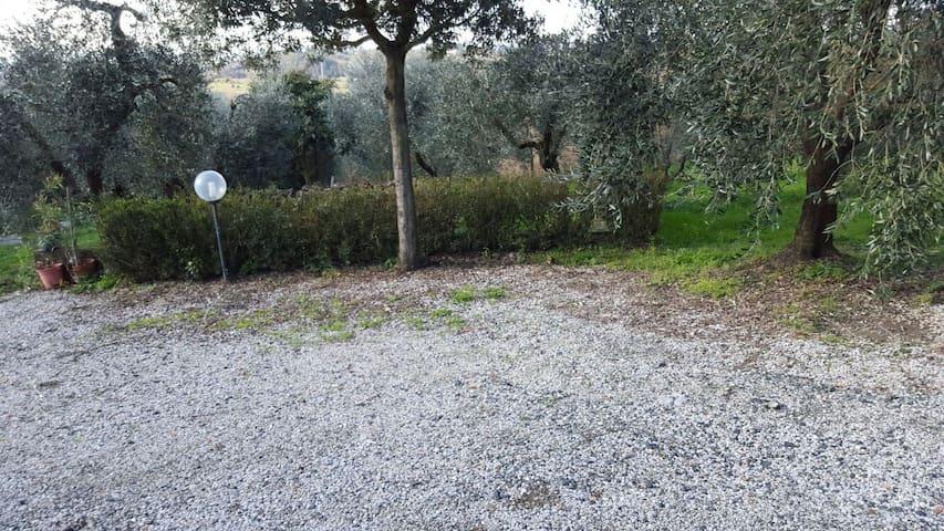 Colline toscane panorama mozzafiato - Castelfiorentino - Apartment