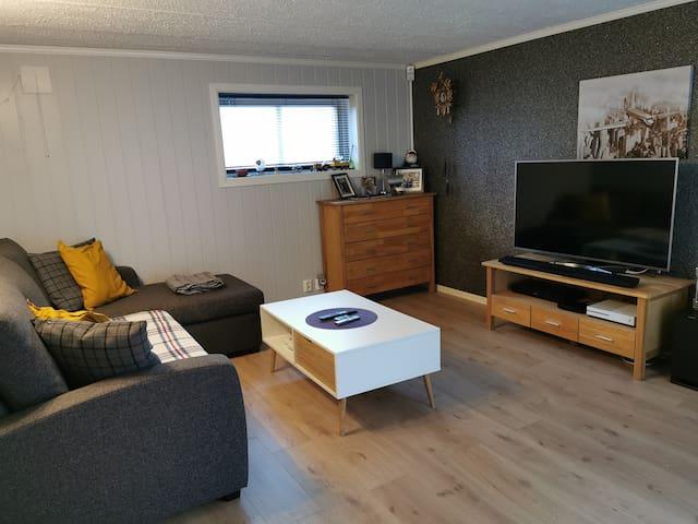 Tv stue, hvor sofa kan gjøres om til en sovesofa. Tv room whit sleeping couch.