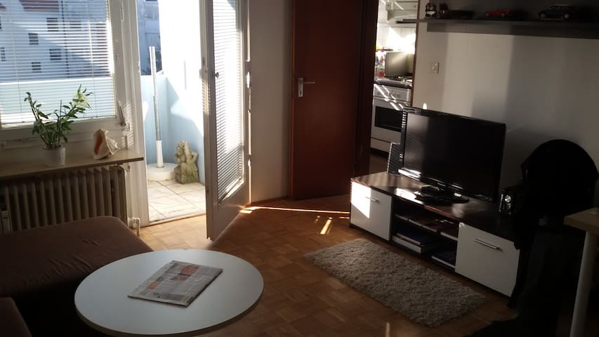 Nice Apartment near Fairground and City - Nürnberg - Apartamento