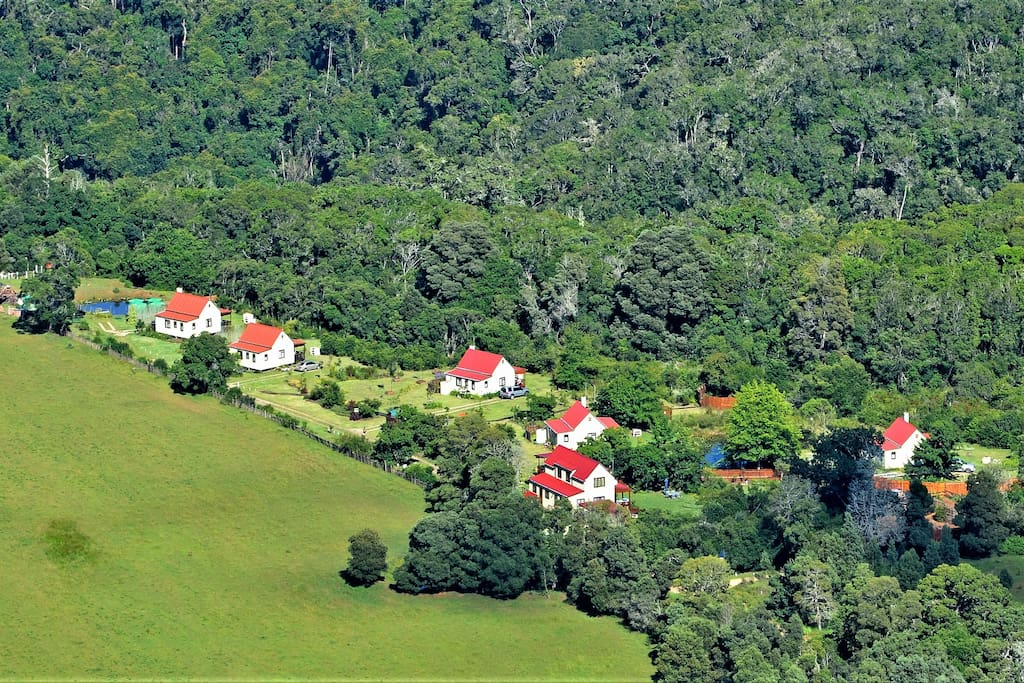 Aerial Views of Cottages