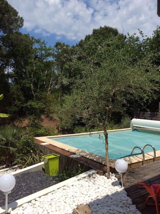 piscine 6 x 4